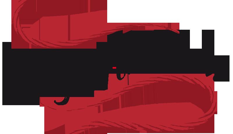 """Máquinas De Coser Singer En """"Aguja Flamenca"""""""